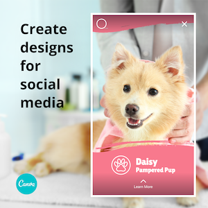 Sign up for Canva, now!